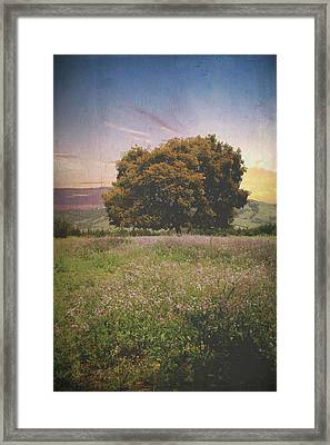 When I Give My Heart Framed Print