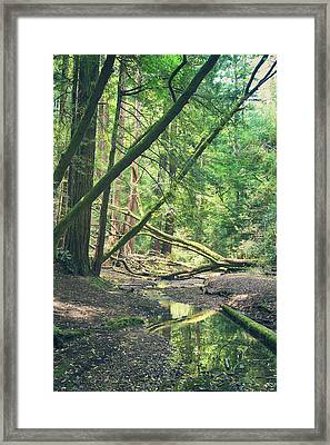 When It Comes Down To It Framed Print by Laurie Search