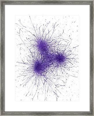When It Is Dark Look For The Stars #167 Framed Print by Rainbow Artist Orlando L aka Kevin Orlando Lau