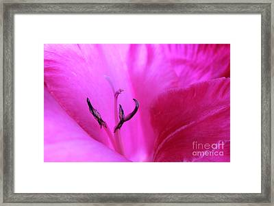 When Life Begins Framed Print by Krissy Katsimbras