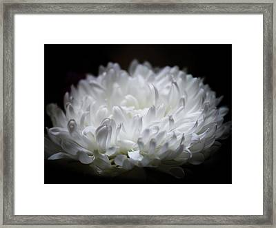 When Nature Is Pure Framed Print by Karen Wiles