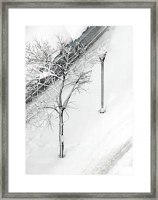 When Nature Quiets The City Framed Print