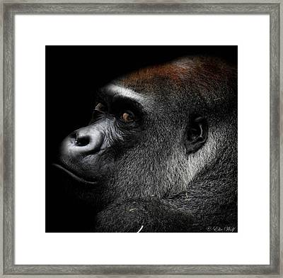 When Our Eyes First Met Framed Print
