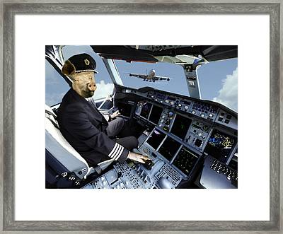 When Pigs Can Fly Framed Print