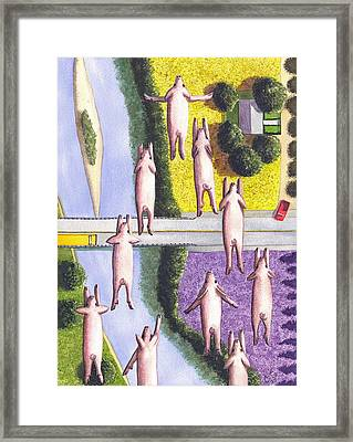 When Pigs Fly Framed Print by Catherine G McElroy