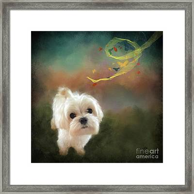 When Puppies Get Confused Framed Print by Lois Bryan