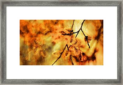 Framed Print featuring the digital art When Spring Awakens by Fine Art By Andrew David