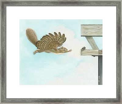 When Squirrels Dream Framed Print