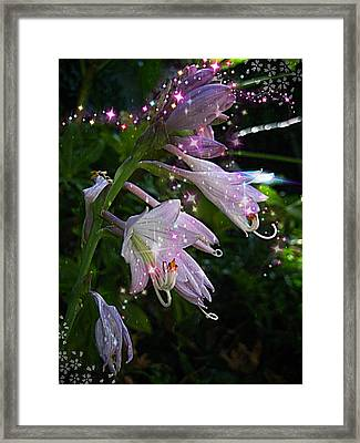 When The Fairies Come Out At Night Framed Print by ARTography by Pamela Smale Williams