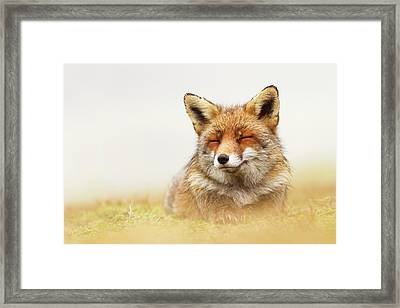 When The Lady Smiles - Red Fox Framed Print by Roeselien Raimond