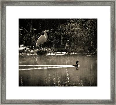 When The Morning Fog Lifted Framed Print