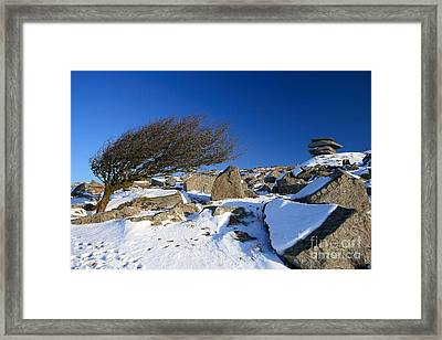 When The North Wind Blows..... Framed Print by Carl Whitfield