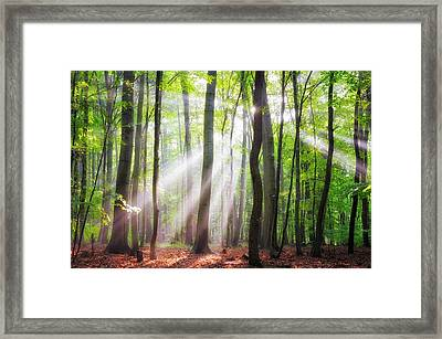 When The Sun Shine On Your Way Framed Print