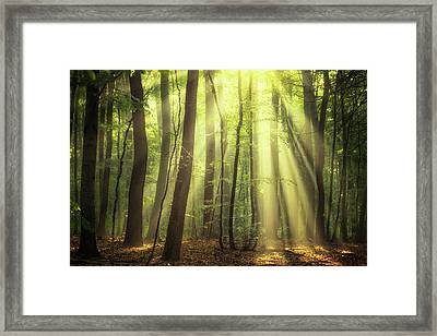 When The Sun Touch Your Heart Framed Print by Janek Sedlar