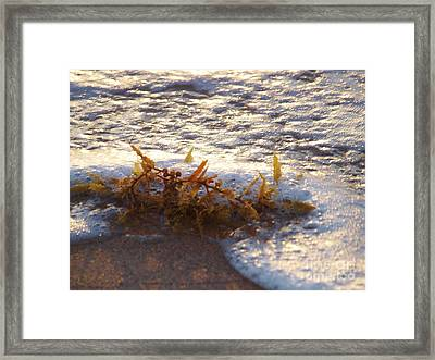 When The Water Hits The Sand Framed Print by E Luiza Picciano