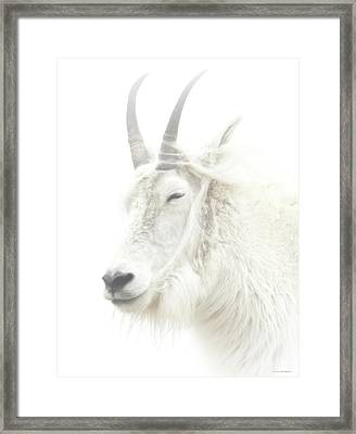 When The Wind Blows Cold Framed Print