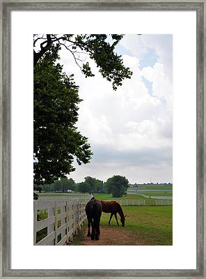 When The Winds Begin To Sing Framed Print