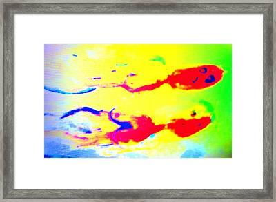 When We Were Swimming Together  Framed Print by Hilde Widerberg