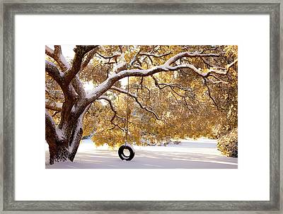 When Winter Blooms Framed Print by Karen Wiles