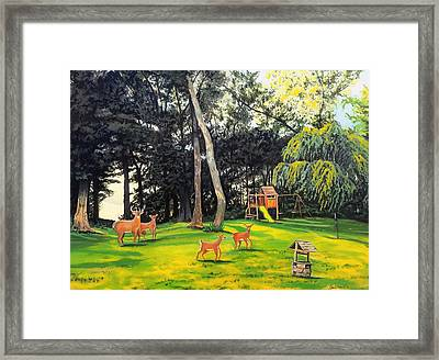 When World's Collide Framed Print by Kevin F Heuman