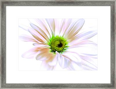 When You Love Someone Framed Print by Krissy Katsimbras