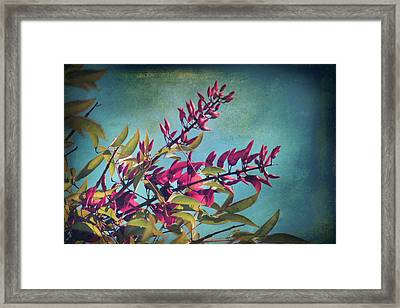 When You Love Someone.... Framed Print