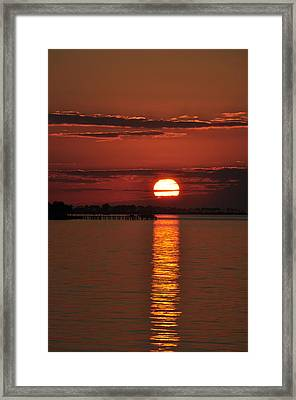 Framed Print featuring the photograph When You See Beauty by Jan Amiss Photography