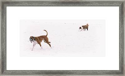 When You See Snow For The First Time  Framed Print