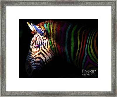 When Zebras Dream 7d8908 Framed Print by Wingsdomain Art and Photography