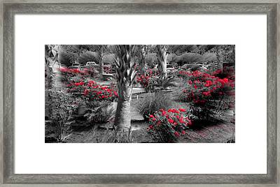 Where Framed Print by David and Lynn Keller