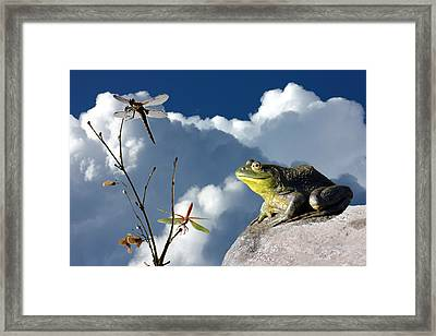 Where Dragonflies Grow On Trees Framed Print by Barbara  White