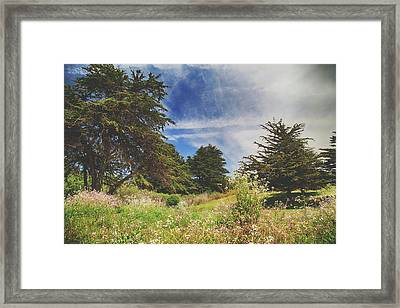 Where Fairies Play Framed Print by Laurie Search
