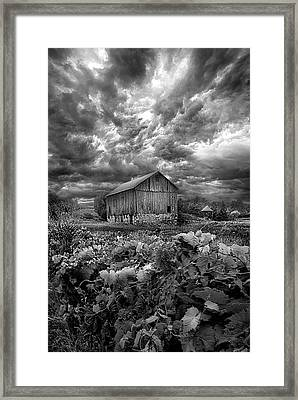 Where Ghosts Of Old Dwell And Hold Framed Print by Phil Koch