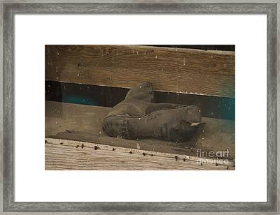 Where Have You Been? Framed Print by Jennifer Apffel