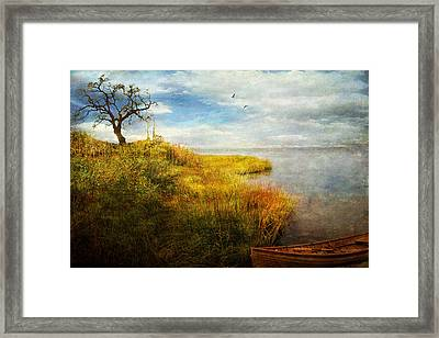 Framed Print featuring the photograph Where I Came To Rest... by John Rivera