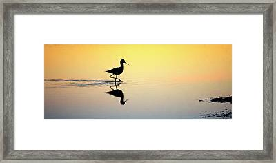 Framed Print featuring the photograph Where Is Dinner? by Quality HDR Photography
