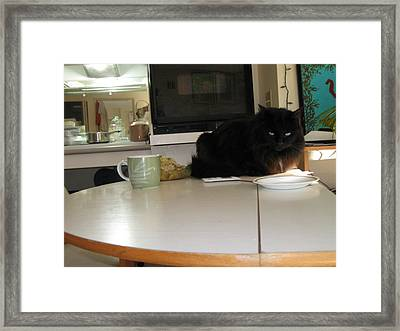 Framed Print featuring the photograph Where Is Mine by AJ Brown