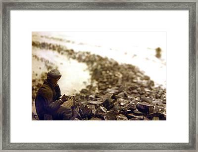 Where Is That St Bernard Framed Print by Jez C Self