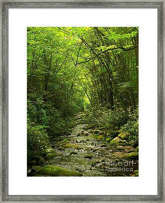 Where It Leads Framed Print