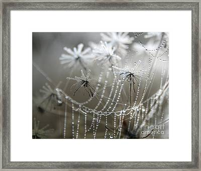 Where Jack Frost Sleeps Framed Print by Jan Piller