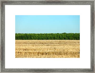 Where Land And Sky Meet Framed Print by Todd Klassy