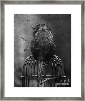 Framed Print featuring the photograph Where Monsters Lurk by Jan Piller