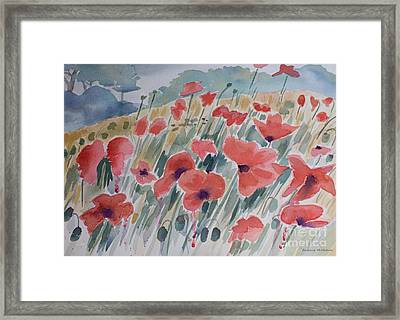 Where Poppies Grow Framed Print