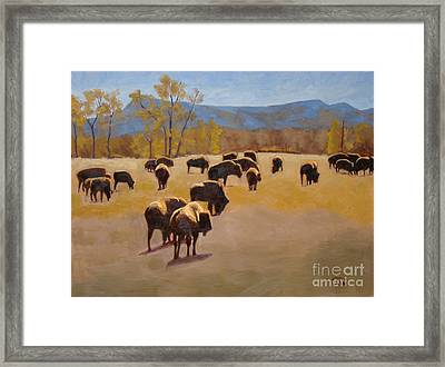 Where The Buffalo Roam Framed Print by Tate Hamilton