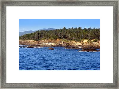 Where The Forest Meets The Ocean Framed Print by Coastal Shooter Photography by Kathy Scott