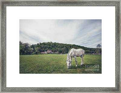 Where The Green Grass Grows Framed Print by Evelina Kremsdorf