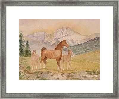 Where The Prairies Meet The Mountains Framed Print