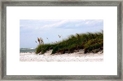 Where The Sea Wind Blows Framed Print by Ian  MacDonald