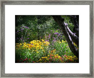 Where The Wild Flowers Grow Framed Print by Trina Prenzi