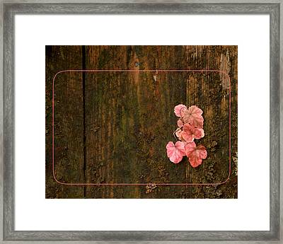 Where There's A Will Framed Print